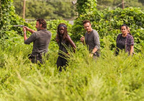 (Andrew Lincoln, Danai Gurira, Ross Marquand and Alana Masterson (photo by Gene Page/AMC).